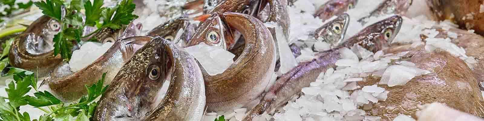 Peixos Reme